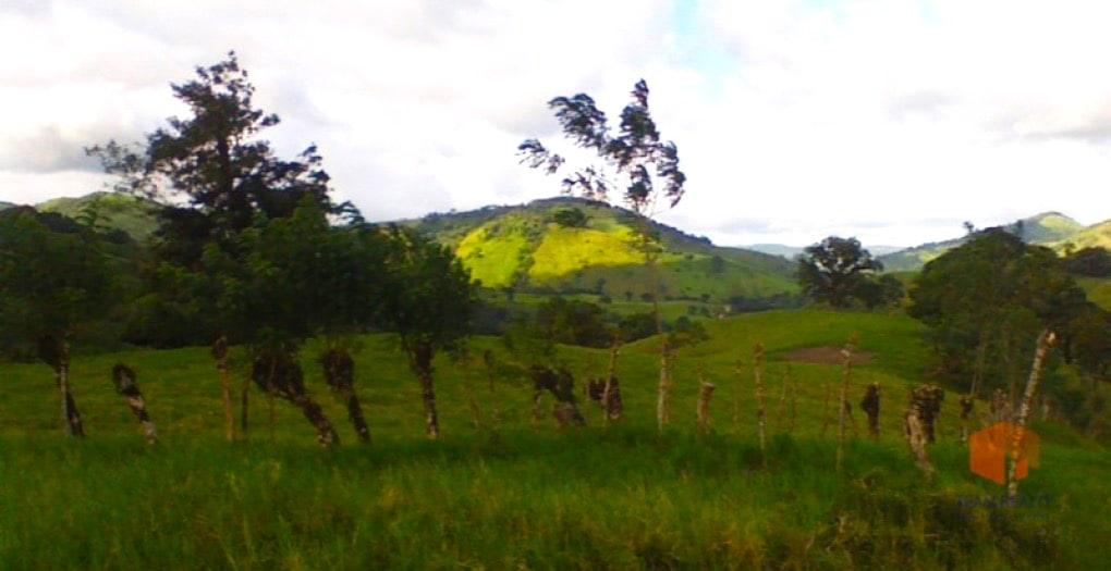 Rio Chiquito Farm