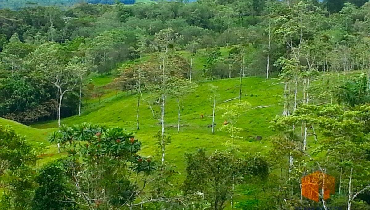 costa-rica-trip-209_9729472865_o