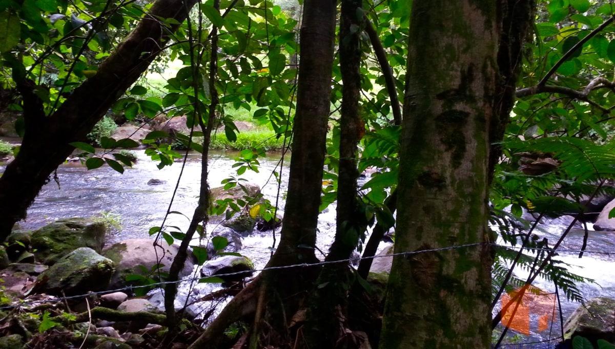 costa-rica-trip-215_9907932403_o