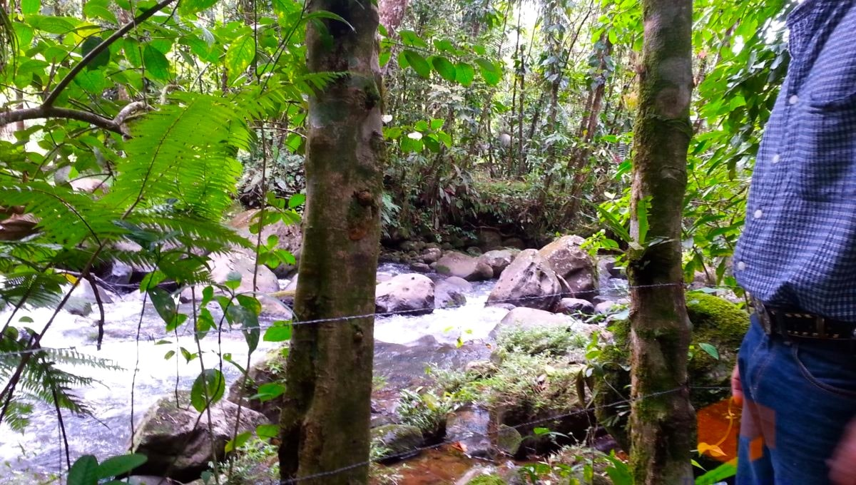 costa-rica-trip-216_9907808676_o
